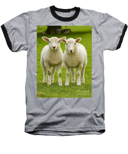 Twin Lambs Baseball T-Shirt