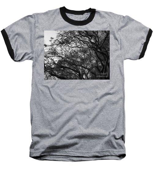 Twirling Branches Baseball T-Shirt