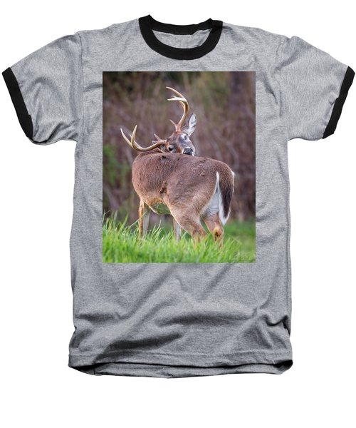 Baseball T-Shirt featuring the photograph Twisted Buck by Alan Raasch