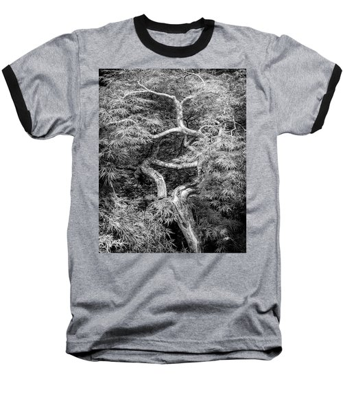 Baseball T-Shirt featuring the photograph Twisted Maple by Alan Raasch