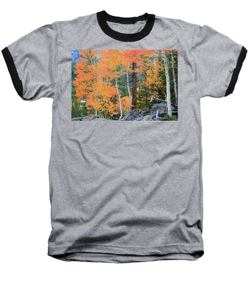 Baseball T-Shirt featuring the photograph Twisted Pine by David Chandler