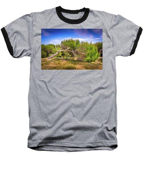 Twisted Tree Baseball T-Shirt