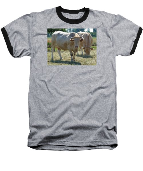 Baseball T-Shirt featuring the photograph Two Cows by Jean Bernard Roussilhe
