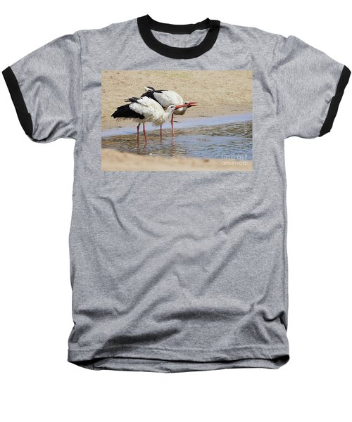 Two Drinking White Storks Baseball T-Shirt