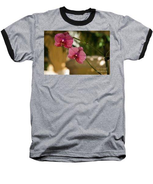 Two Friends Baseball T-Shirt by Sandy Molinaro