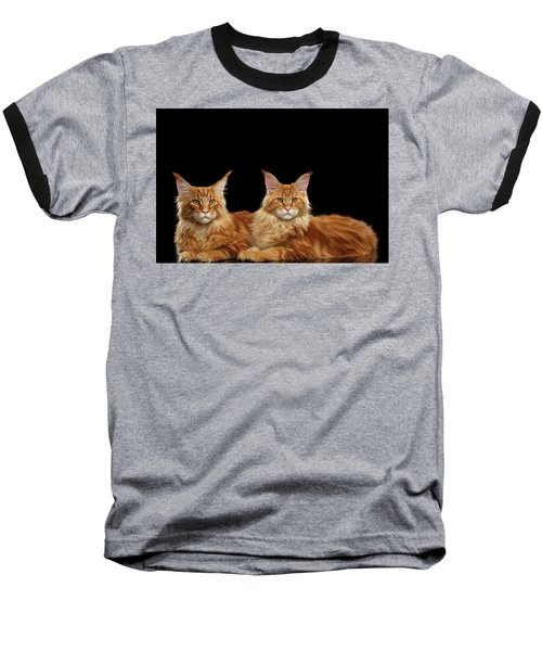 Two Ginger Maine Coon Cat On Black Baseball T-Shirt