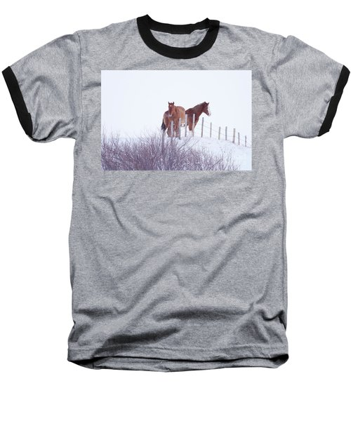 Two Horses In The Snow Baseball T-Shirt