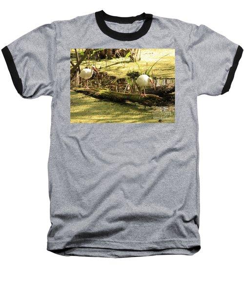 Two Ibises On A Log Baseball T-Shirt by Carol Groenen