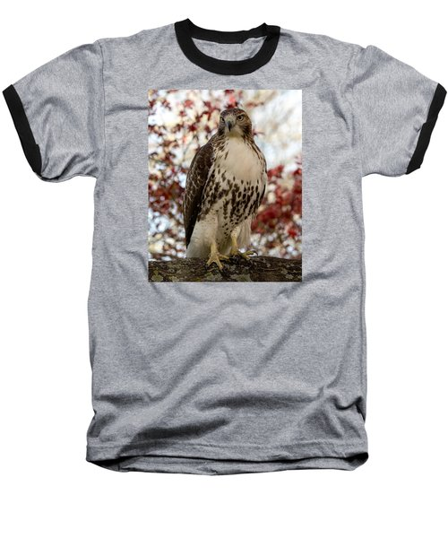 Baseball T-Shirt featuring the photograph Two Reds Are Better Than One by Stephen Flint