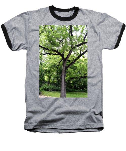 Two Tone Tree Baseball T-Shirt