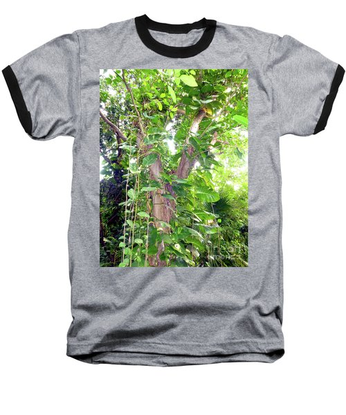 Baseball T-Shirt featuring the photograph Under A Tropical Tree With Vines by Francesca Mackenney