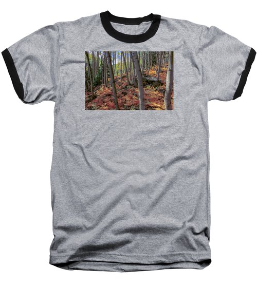 Under The Aspens Baseball T-Shirt