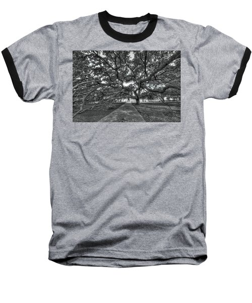 Under The Century Tree - Black And White Baseball T-Shirt