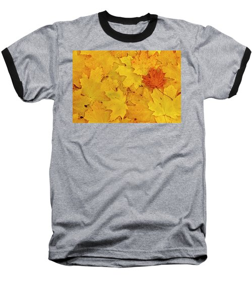 Baseball T-Shirt featuring the photograph Understory by Tony Beck