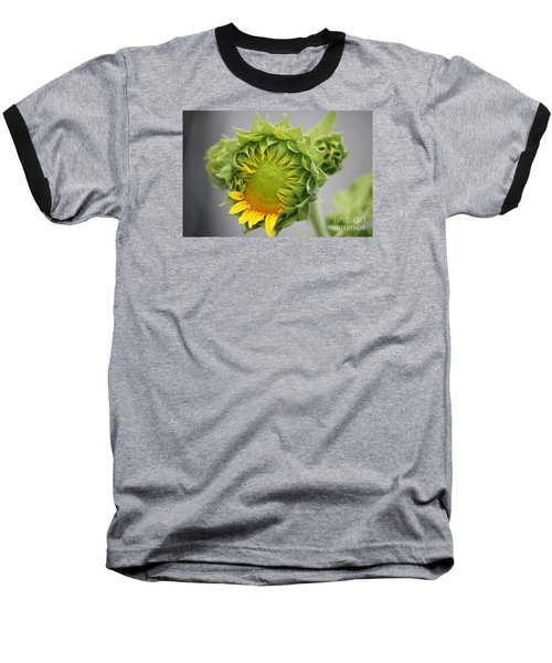 Unfolding Sunflower Baseball T-Shirt