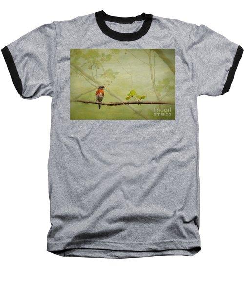 Until Spring Baseball T-Shirt by Lois Bryan