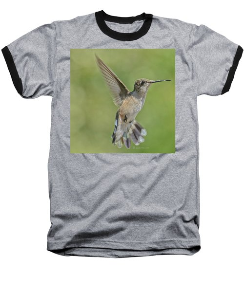 Untitled Hum_bird_four Baseball T-Shirt