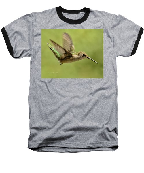 Untitled Hum_bird_one Baseball T-Shirt