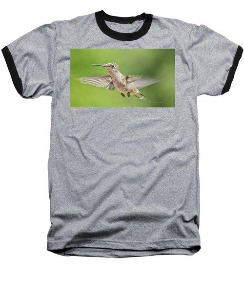 Untitled Hum_bird_three Baseball T-Shirt