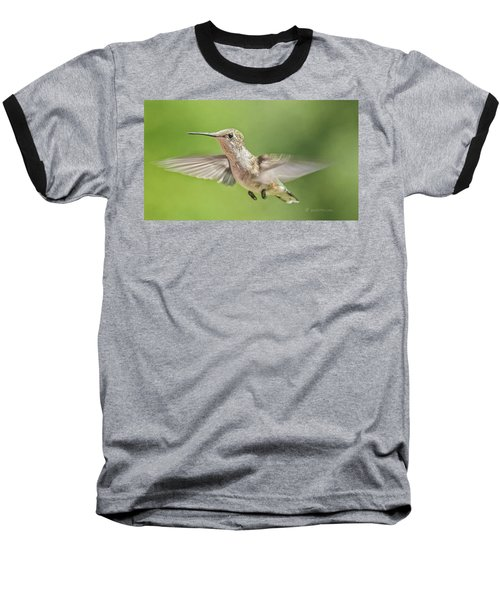 Untitled Hum_bird_three Baseball T-Shirt