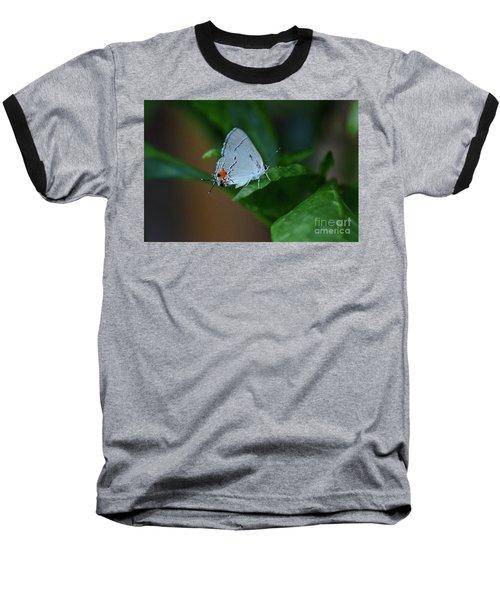 Unusual Butterfly Grey Hairstreak Strymon Melinus Baseball T-Shirt