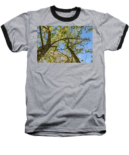 Up A Tree Baseball T-Shirt