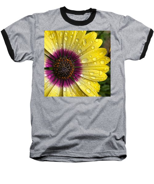 Daisy Up Close  Baseball T-Shirt