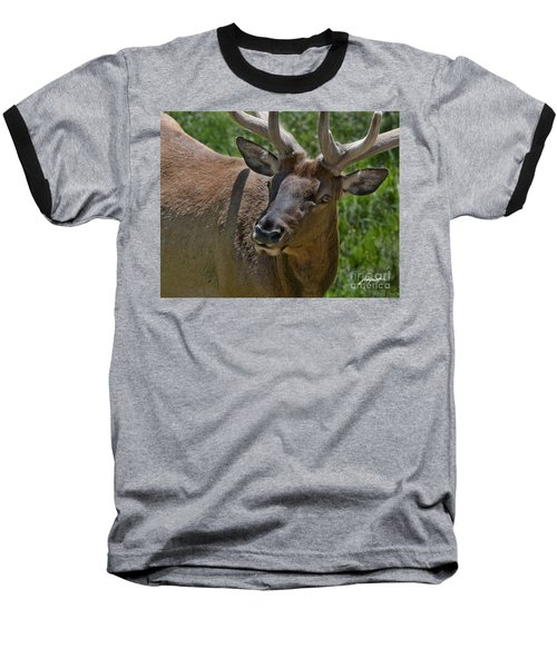 Up  Close Baseball T-Shirt