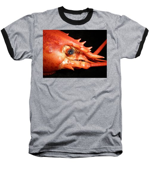 Up Close Lobster Baseball T-Shirt by Patricia Piffath