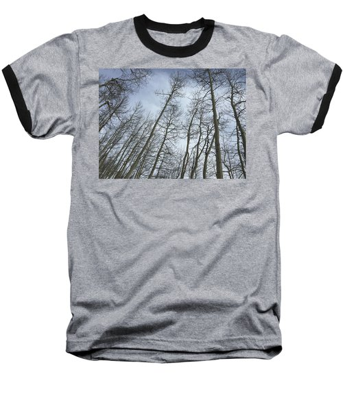 Up Through The Aspens Baseball T-Shirt by Christin Brodie
