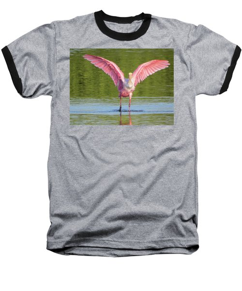 Up, Up And Away Sanibel Spoonbill Baseball T-Shirt