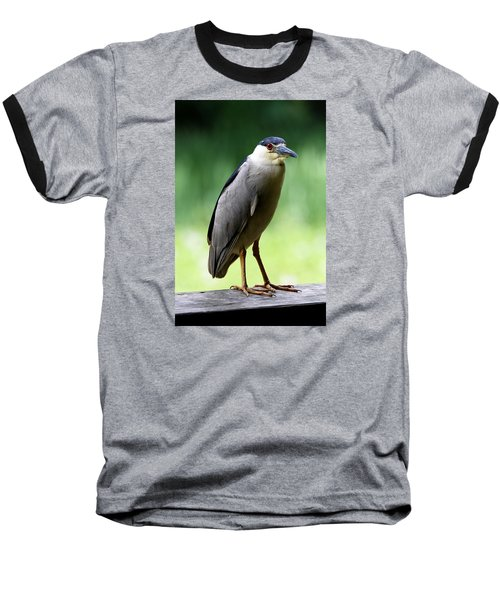 Upstanding Heron Baseball T-Shirt