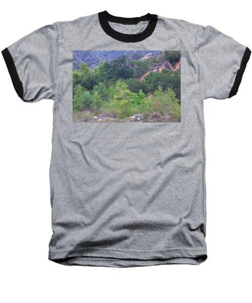 Urban Wilderness Baseball T-Shirt