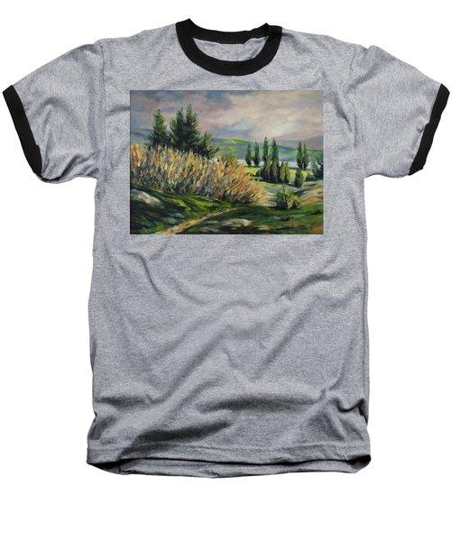 Valleyo Baseball T-Shirt by Rick Nederlof