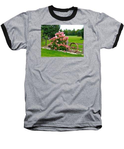 Vanilla Strawberry Hydrangea Baseball T-Shirt by Randy Rosenberger