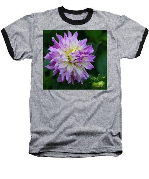 Veca Lucia Dahlia 2 Baseball T-Shirt