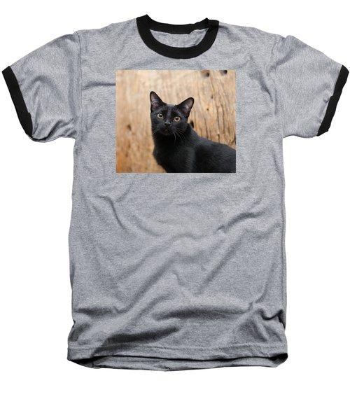 Velvet 2 Baseball T-Shirt