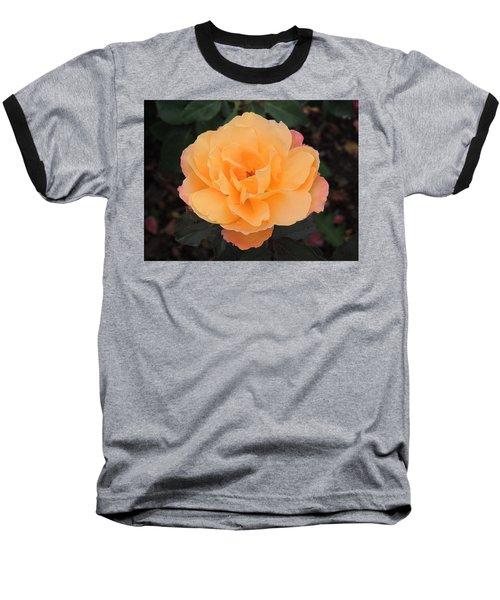 Velvety Orange Rose Baseball T-Shirt by Teresa Schomig