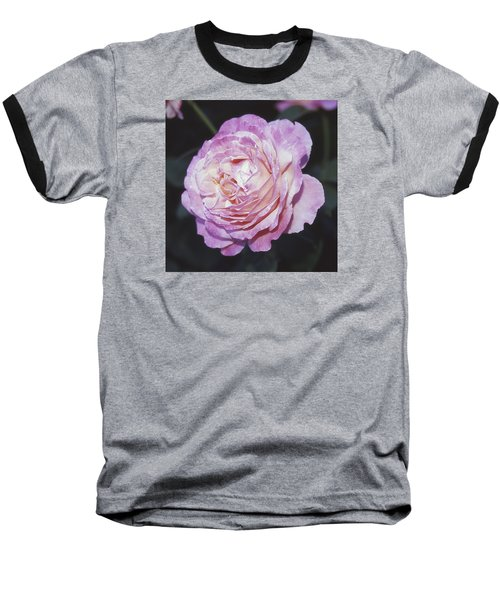 Velvia Rose Baseball T-Shirt