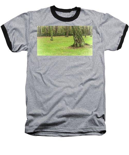 Venerable Trees And A Stone Wall Baseball T-Shirt