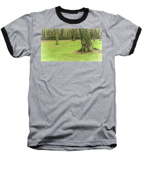 Venerable Trees And A Stone Wall Baseball T-Shirt