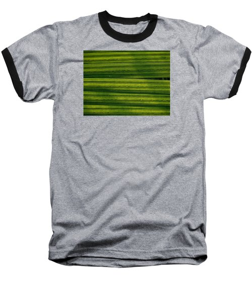 Venetian Blinds Baseball T-Shirt
