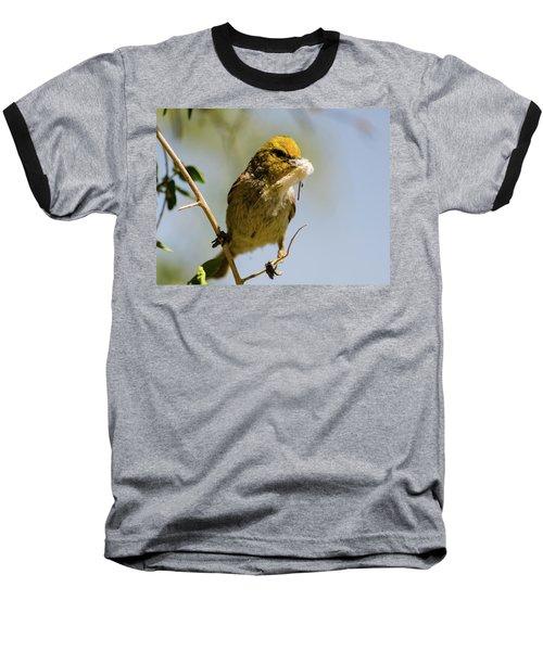 Verdin Building A Nest Baseball T-Shirt
