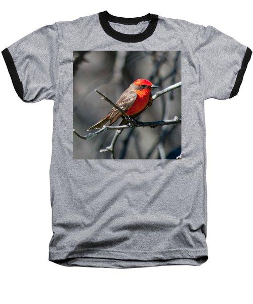 Baseball T-Shirt featuring the photograph Vermilion Flycatcher by Dan McManus