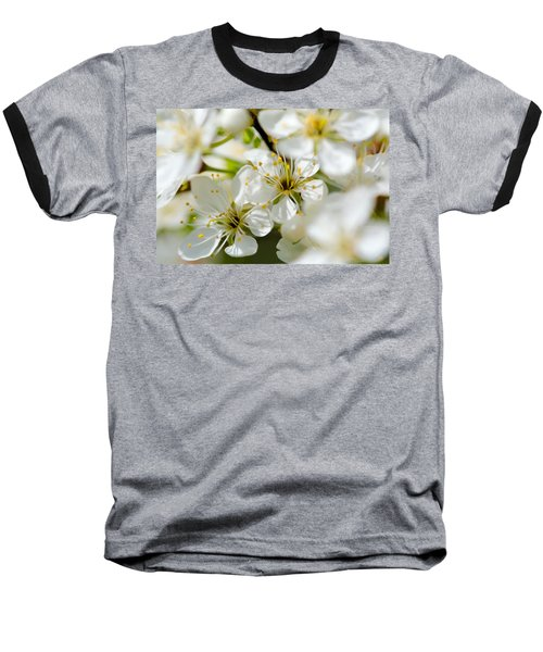 Vermont Apple Blossoms Baseball T-Shirt