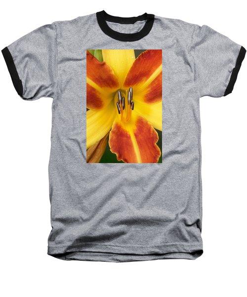 Vibrant Lilly Baseball T-Shirt by Tiffany Erdman