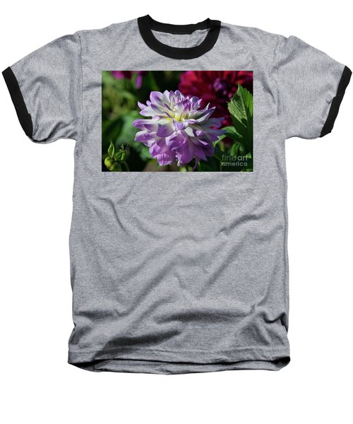 Victoria Ann Dahlia Baseball T-Shirt by Glenn Franco Simmons