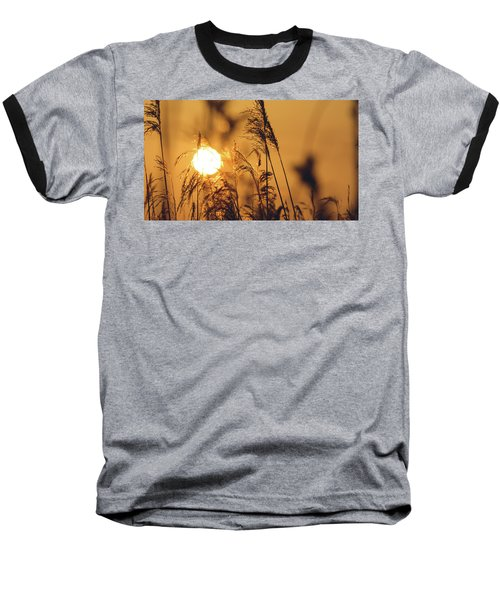 View Of Sun Setting Behind Long Grass C Baseball T-Shirt