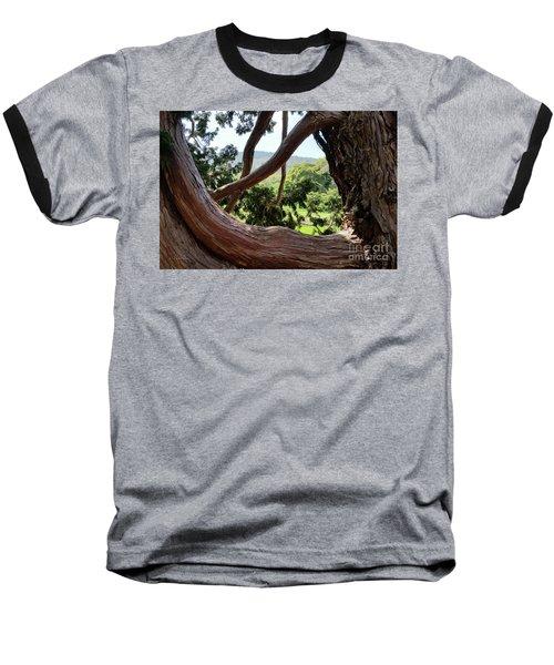 View Through The Tree Baseball T-Shirt by Carol Lynn Coronios