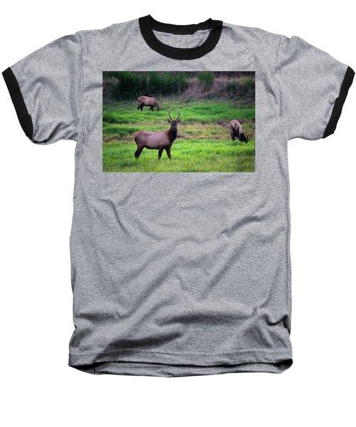 Vigilant Baseball T-Shirt